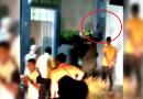 Investigarán caso de policía que disparó al aire en medio de una riña en Puerto Asís