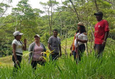 Indígenas del Putumayo, comprometidos con proyecto agroforestal
